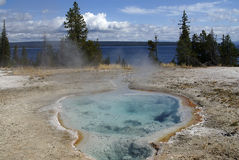 Thermal pool, Yellowstone park, USA. View on one of Yellowstone's thermal pools, Yellowstone national park, USA royalty free stock photography