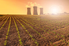 Thermal power plant at sunset, corn field Royalty Free Stock Photography