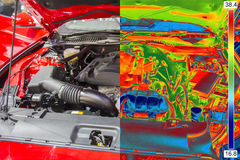 Thermal and real Image Stock Image