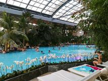 Therme Bucharest, Palm Zone. Indoor pool with thermal water stock images