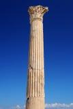 Thermische baden van Antonin in Carthago Stock Foto's