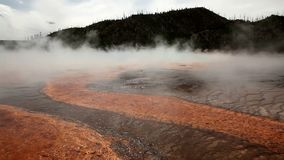Thermische hete pools in Yellowstone stock footage