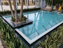 Thermische pool binnen - bloemen op de rand royalty-vrije stock afbeeldingen