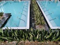 Thermische pool binnen - bloemen op de rand stock foto's
