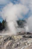 Thermisches Tal Whakarewarewa, Rotorua Stockfotos
