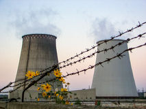 Thermoelectric plant and flowers Stock Images