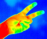 Thermografiek-2 vingers Royalty-vrije Stock Foto's