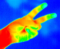 Thermograph-2 fingers. Real infrared (thermic) photo of two fingers on blue background Royalty Free Stock Photos