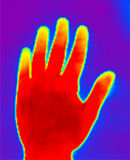 Thermograph-Hand. Real infrared (thermic) photo of a hand Stock Photo