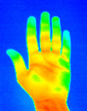 Thermograph-Hand Palm. Real infrared (thermic) photo of a hand palm Stock Photo