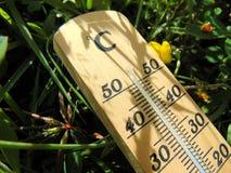 Thermomètre Celsius en bois s'étendant dans l'herbe à côté d'une fleur jaune image stock