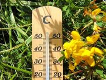 Thermomètre Celsius en bois s'étendant dans l'herbe à côté d'une fleur jaune image libre de droits