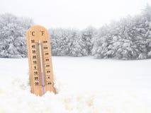 Thermomètre dans la neige photographie stock libre de droits