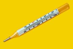 Thermomètre sain Photos stock