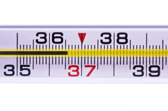 Thermometer Royalty-vrije Stock Afbeelding