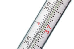 Thermometer. Shows a normal temperature Royalty Free Stock Photos