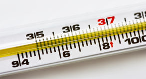 Thermometer. Close up of a thermometer royalty free stock photos