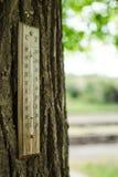 Thermometer auf einem Baumstamm stockbilder