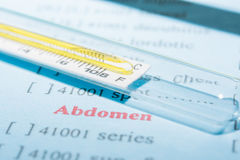 Thermometer auf labolatory Blatt Stockfotos