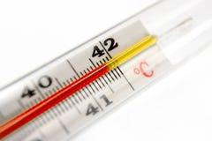Thermometer, der 42 Grad zeigt Stockfoto