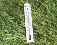 Thermometer on green grass Royalty Free Stock Photography