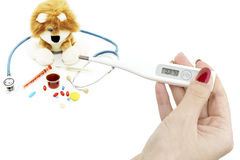 Thermometer in hand and soft toy with a stethoscope Stock Photos