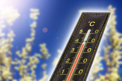 Thermometer with hot temperature. Catkin background and lens flare Stock Photos