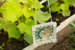 Thermometer for measuring the temperature of the air in the greenhouse, sunlight and rays.  stock photos