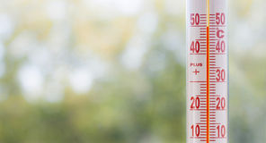 Thermometer misuring 50 degrees heat. Outdoor thermometer misuring 50 degrees heat with out of focus plants background and space for text Stock Photos