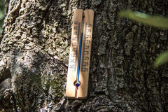 Thermometer in the shade Royalty Free Stock Photo