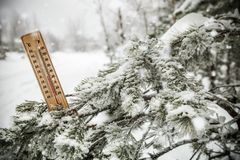 Thermometer with sub-zero temperatures on the branch of a tree. In winter forest royalty free stock image