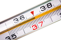 Thermometer on white Stock Image