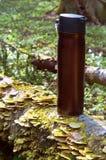 Thermos, δάσος, πεζοπορώ, ταξίδι, χαλάρωση, ποτό, ζεστό, κούπα Στοκ Εικόνες