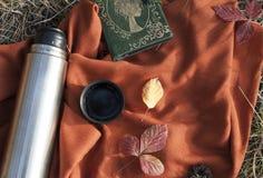 Thermos с горячим чаем в пикнике концепции леса в парке стоковая фотография