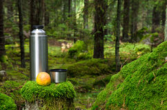 Thermos and apple in deep forest Royalty Free Stock Images