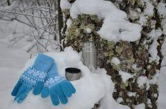 Thermos del metal con la bebida caliente del té Invierno imagen de archivo libre de regalías
