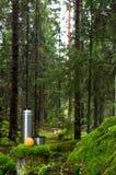 Thermos et pomme dans la forêt moussue photos stock