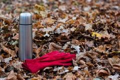 Thermosflasche und Handschuhe im Herbstlaub Stockbild