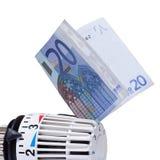 Thermostaat met 20 euro. Stock Afbeelding