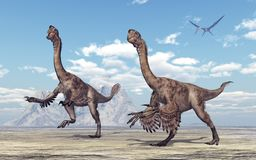 Theropod dinosaur Citipati Stock Photo