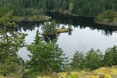 Thetis lake regional park Royalty Free Stock Photo