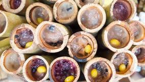 Thia bambusa ryż Fotografia Stock