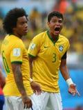 Thiago Silva Coupe du Monde 2014 Stock Images