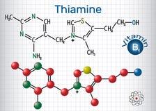 Thiaminthiamin oder Vitamin B1, gefunden im Lebensmittel, benutzt als Diät vektor abbildung