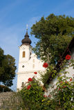 Thiany abbey with roses in front Stock Photography