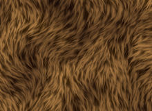 Thick animal hair texture Stock Photos