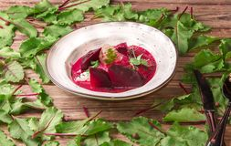 Thick beet soup with mozzarella and parsley in gelatin, sprinkled with sesame seeds, garnished with young pea sprouts. In white plate on a wooden background stock image
