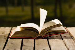 Thick book lying open on wooden surface, pages blowing in wind, beautiful night light setting, magic concept shoot Royalty Free Stock Photos