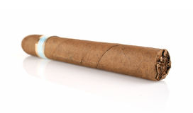 Thick cigar Stock Image