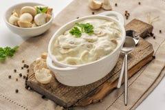 Thick creamy sauce with mushrooms stock photos